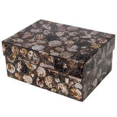 Mother-of-Pearl Lidded Box by R & Y Augousti, Paris