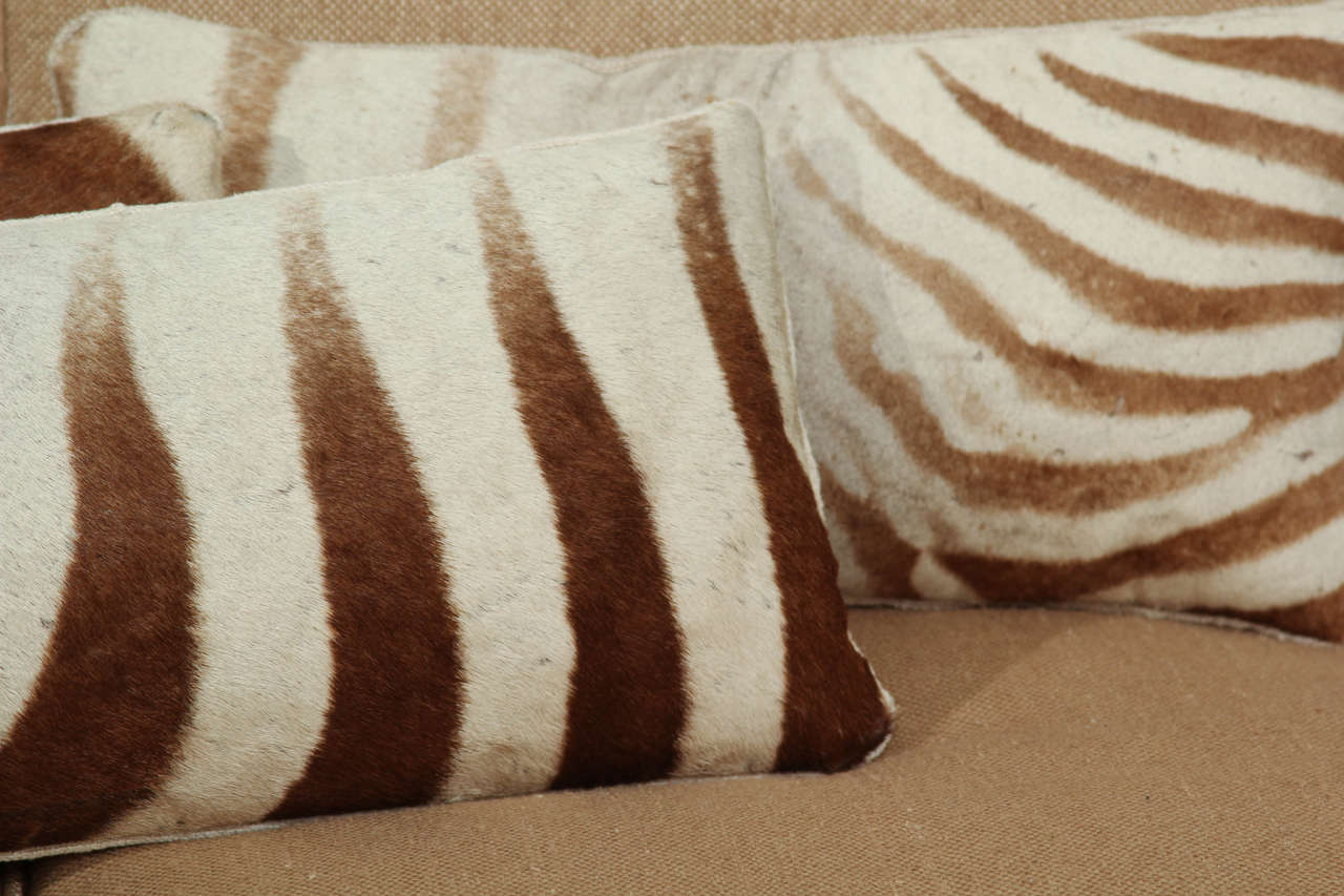 zebra pillows image 3