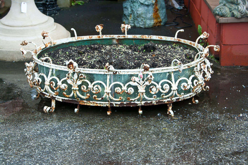 Antique Decorative Wrought Iron Oval Planter For Sale At