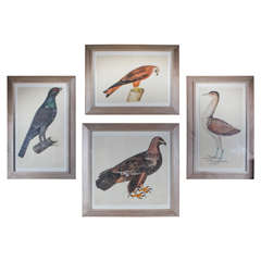 Set of 4 Framed 19th Century Engragvings