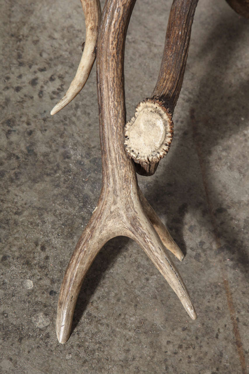 19th Century Antler Stool In Excellent Condition For Sale In Chicago, IL