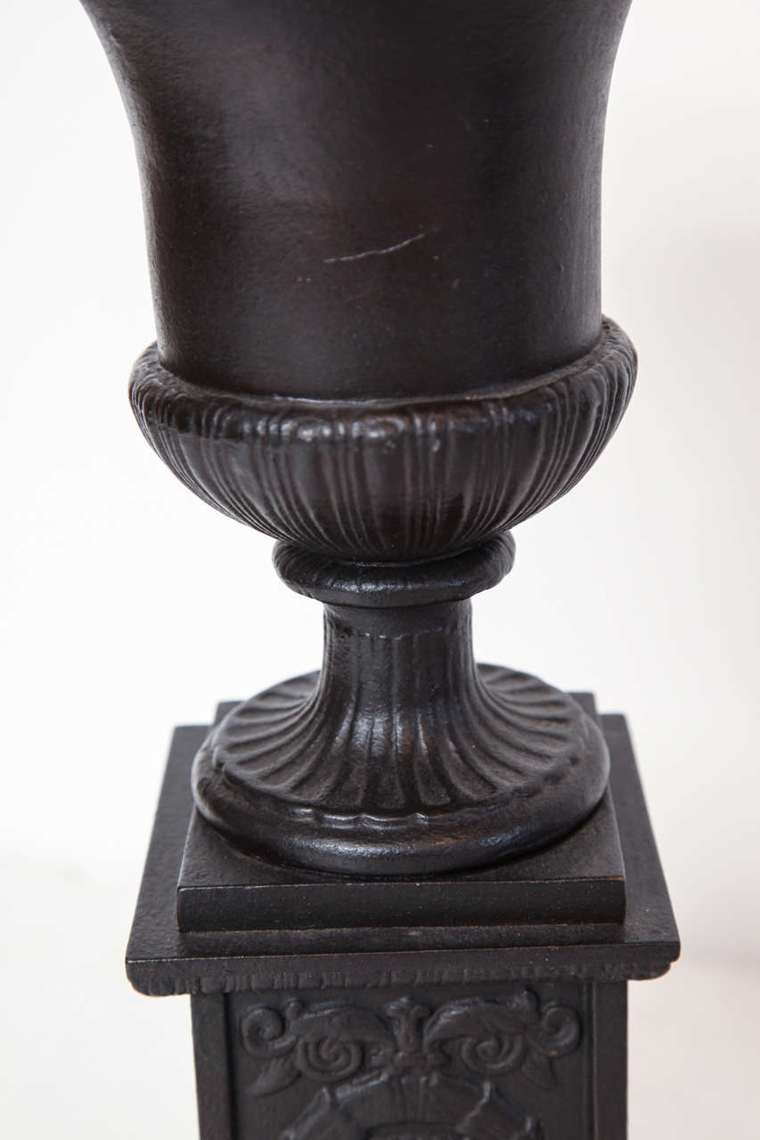 Pair of 19th Century Iron Neo-Classical Urns For Sale 2