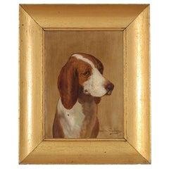 Framed portrait of a dog