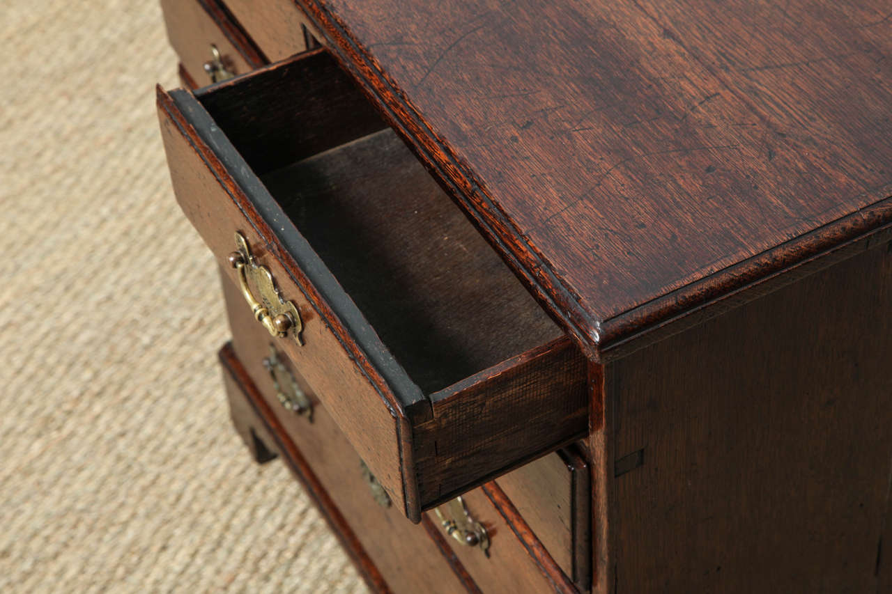 Mid-18th Century Fine George I Oak Bachelor's Chest For Sale
