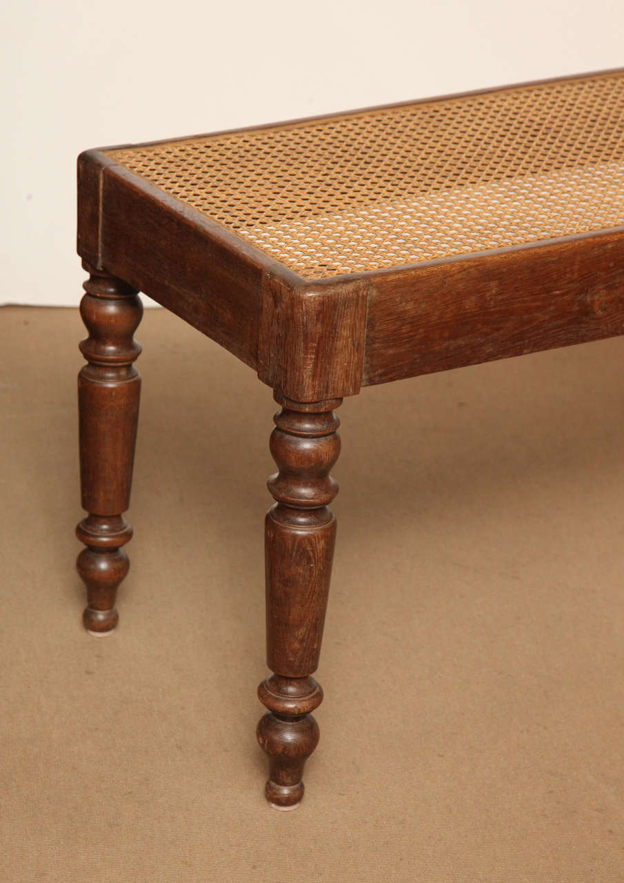 19th Century English Oak And Cane Bench For Sale At 1stdibs