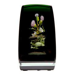 Paul Stankard Cloistered Glass Botanical