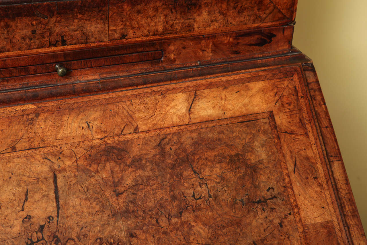 Fine Burr Walnut George I Bureau Bookcase In Excellent Condition For Sale In New York, NY