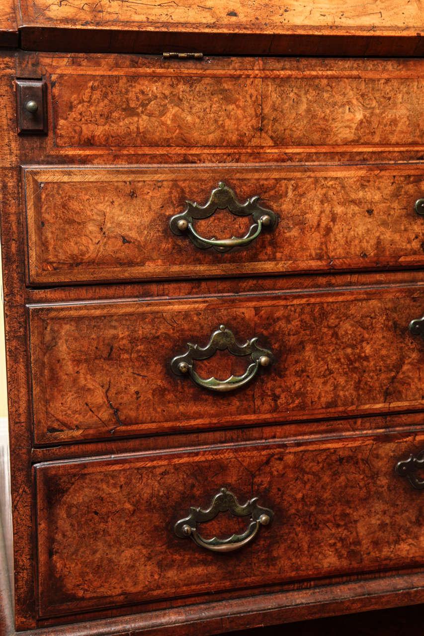 18th Century and Earlier Fine Burr Walnut George I Bureau Bookcase For Sale