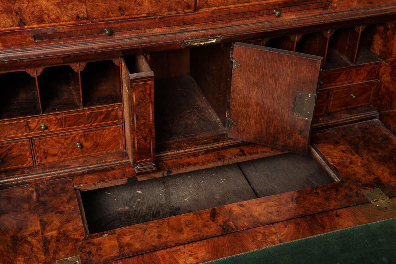 Fine Burr Walnut George I Bureau Bookcase For Sale 3