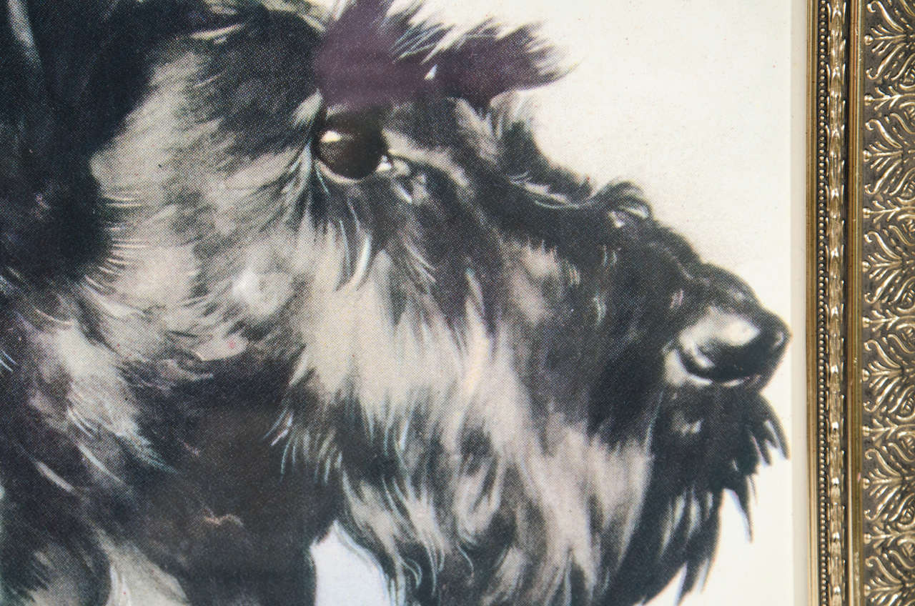 Vintage 'Portrait of Dog' Colored Lithograph on Paper  3