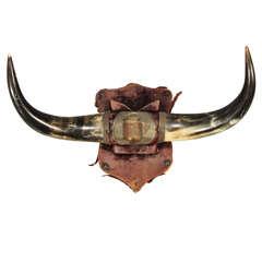 horn rack with worn velvet covered shield