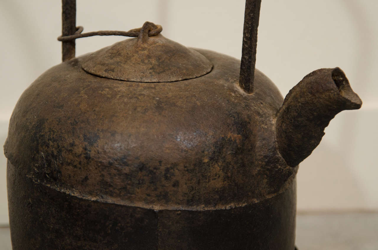 Th century chinese cast iron teapot at stdibs