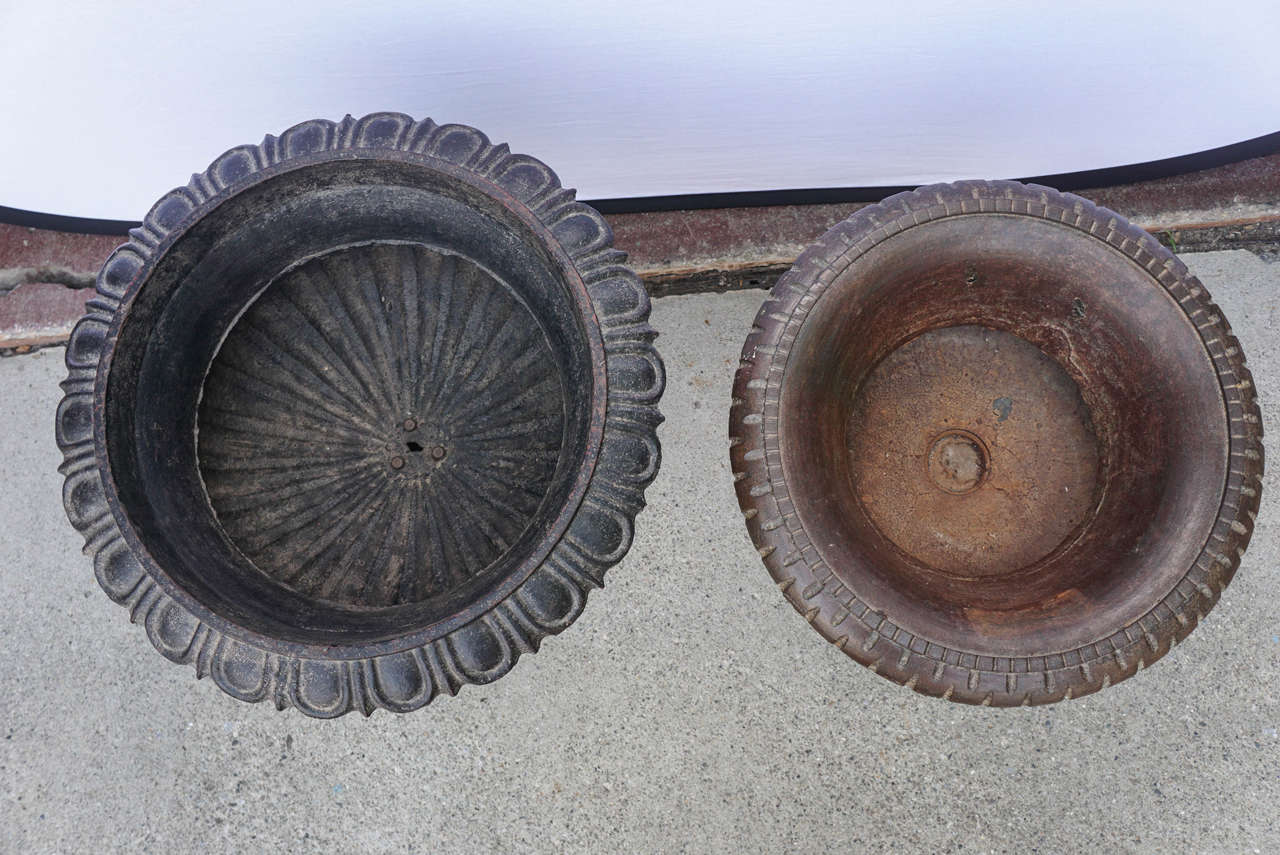 Indian Midcentury Cast Iron Planters For Sale