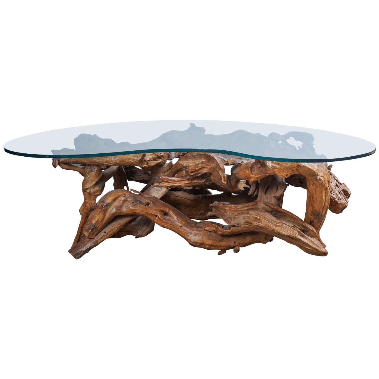 Greatest Root Table with Glass Top For Sale at 1stdibs WP18