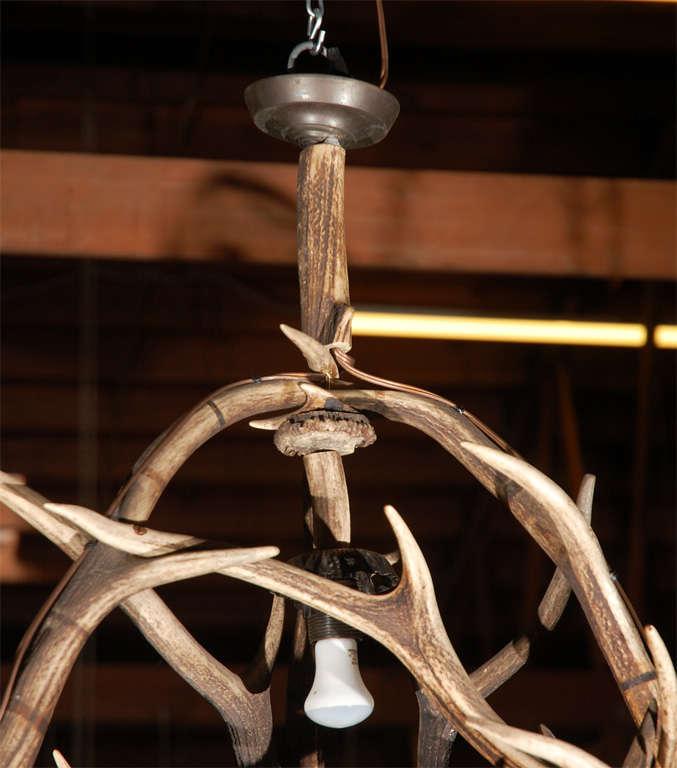 Antique Deer Horn Four Light Chandelier For Sale At 1stdibs