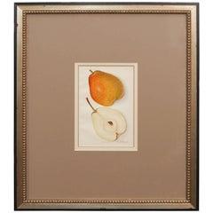 Architectural Digest Fruit Print