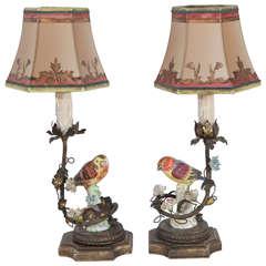 Pair of 1900s German Porcelain Bird Lamps