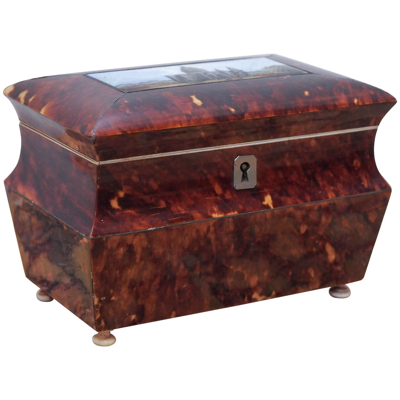 English Victorian Tortoiseshell Tea Caddy with Eglomise Panel