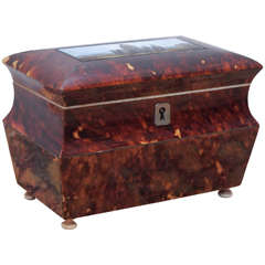 English Victorian Tortoiseshell Tea Caddy with Eglomise Panel