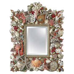 Spectacular Mirror by Douglas Cloutier
