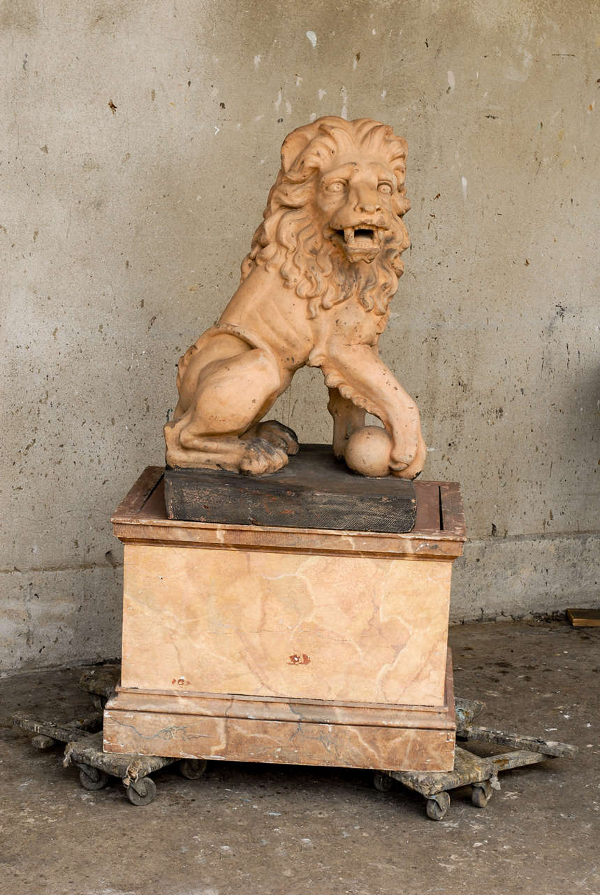 An exquisite and very expressive 19th century Italian terracotta Lion on a marbleized wood base, with the traditional pose holding the right paw over a sphere. Wonderful details.