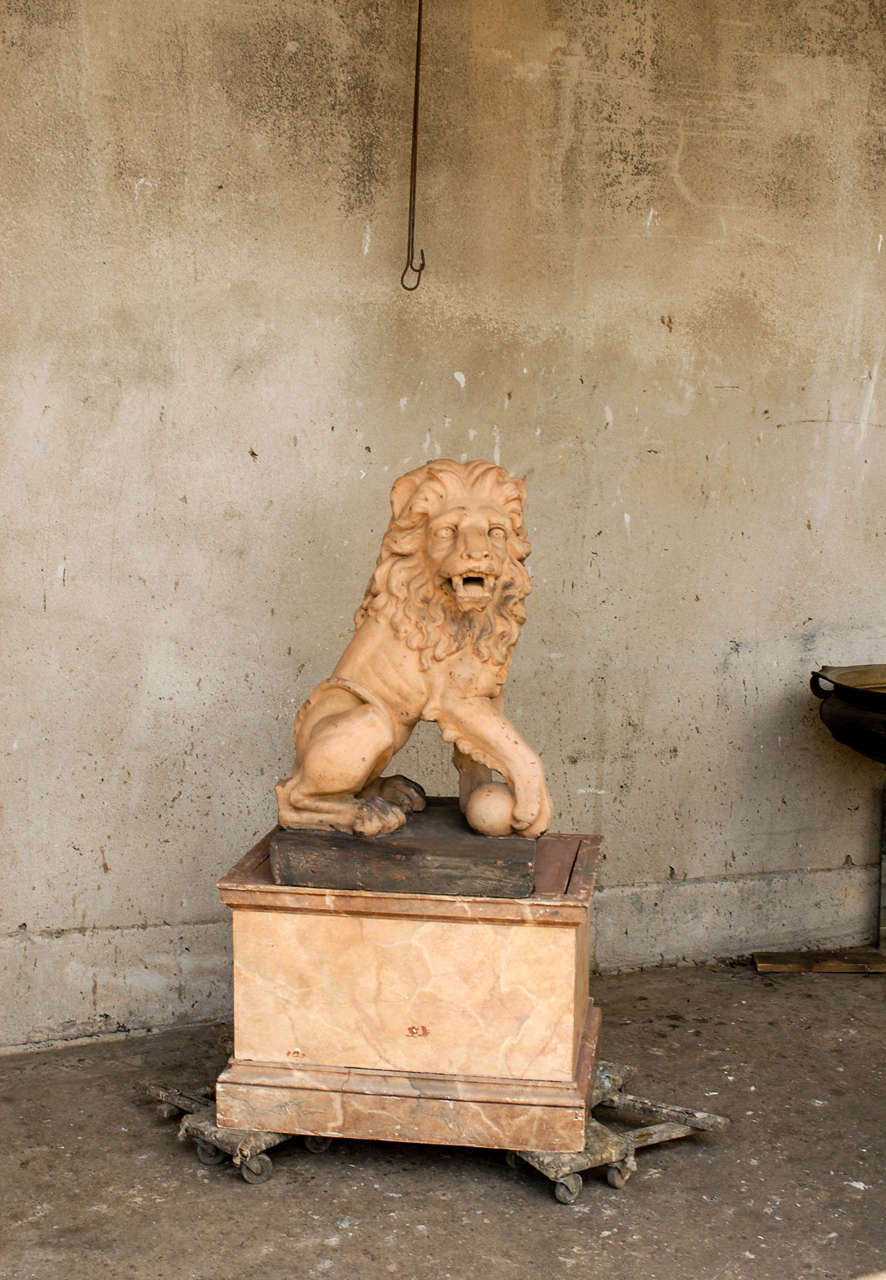 Italian 19th Century Terracotta Lion on Faux Marble Pedestal For Sale 7