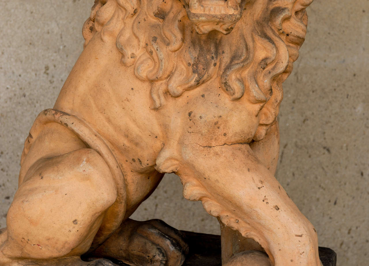 Italian 19th Century Terracotta Lion on Faux Marble Pedestal For Sale 1