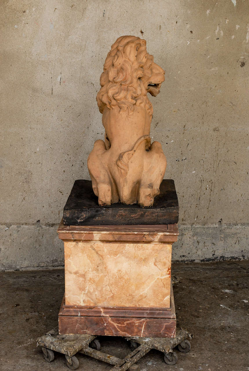 Italian 19th Century Terracotta Lion on Faux Marble Pedestal For Sale 6