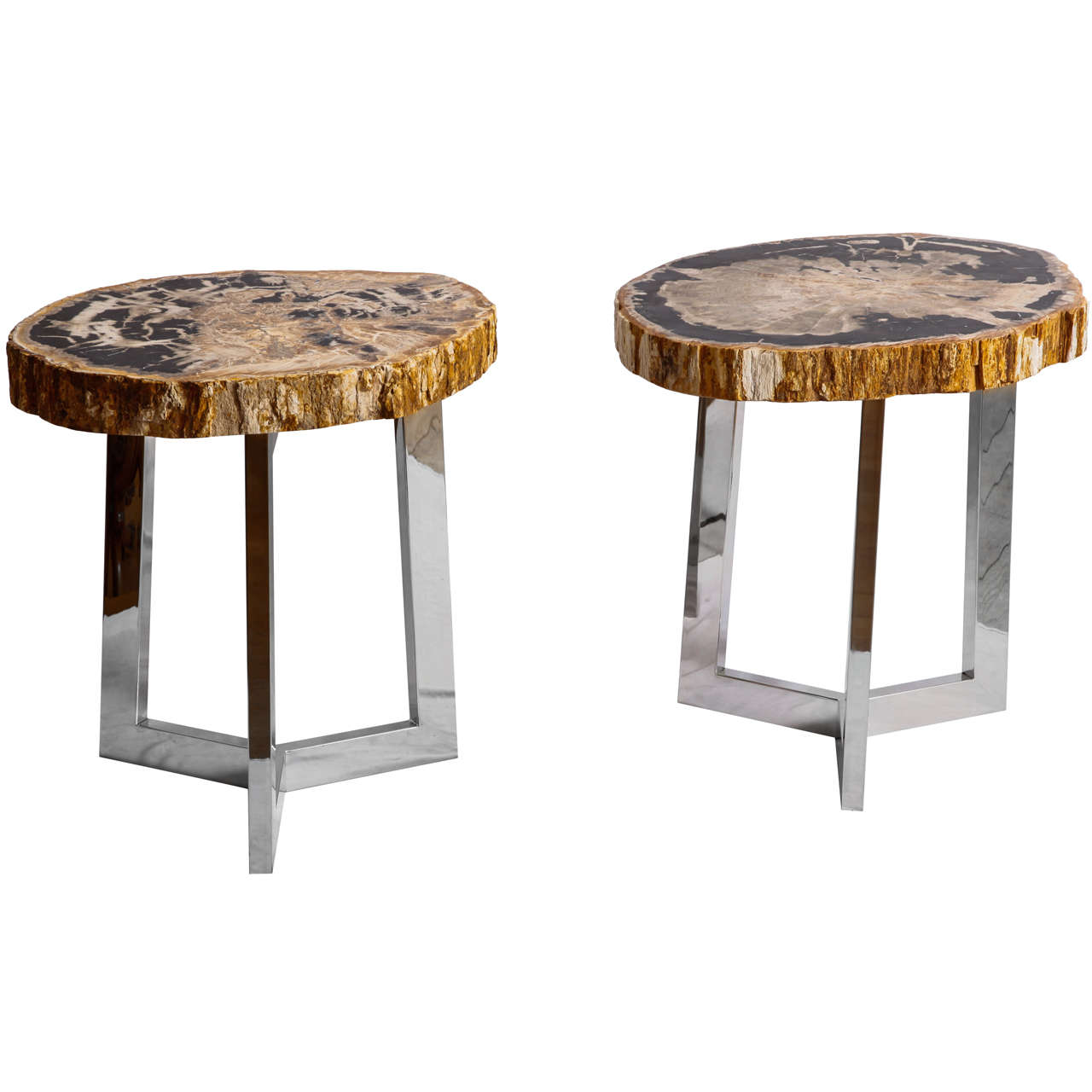 Pair Of Petrified Wood Side Tables At 1stdibs