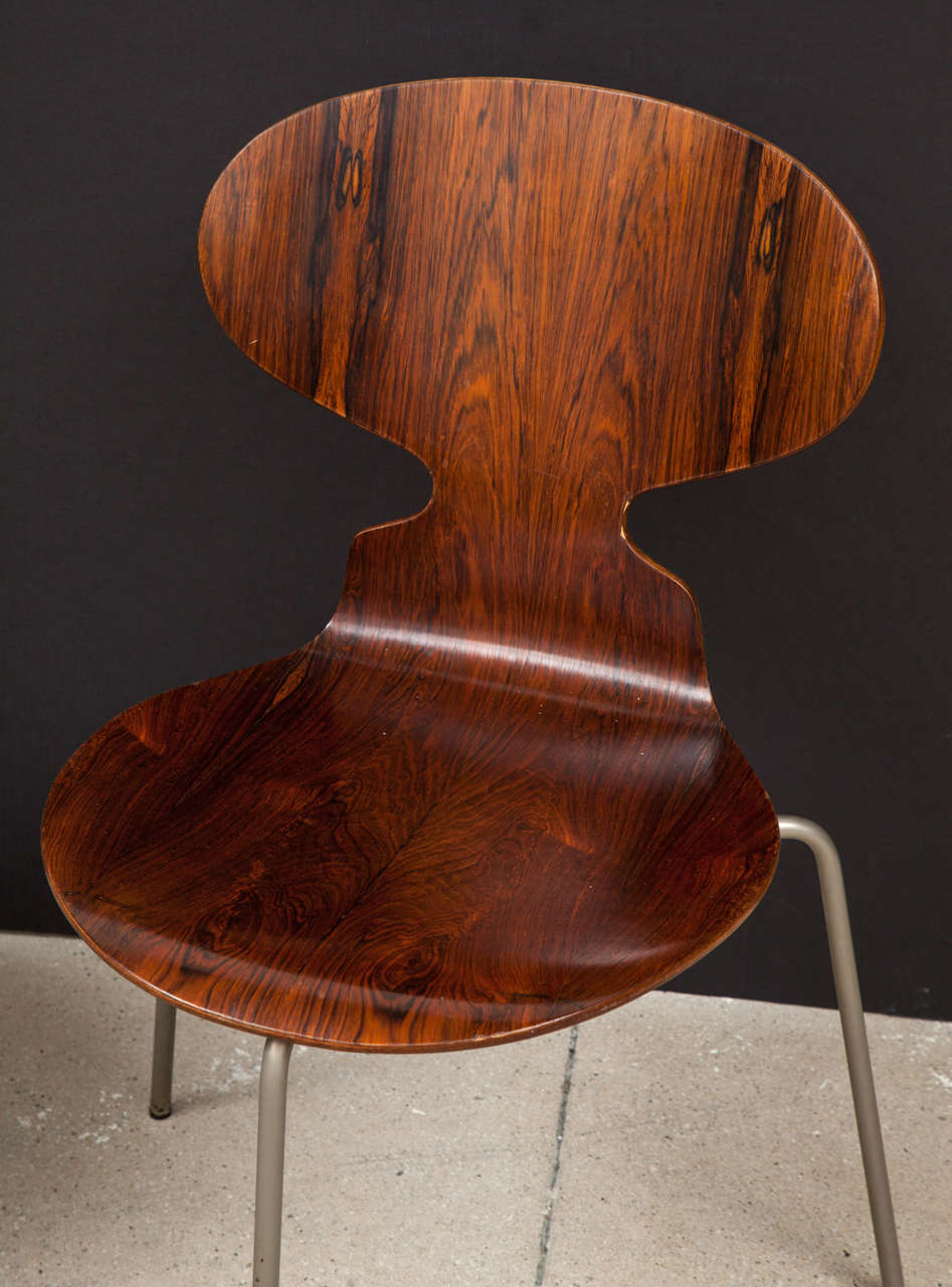 Ant Rosewood Table and Dining Chair Set by Arne Jacobsen 10