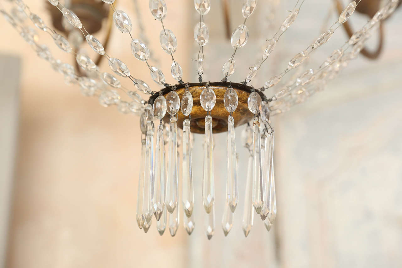 Large Early 19th Century Chandelier from Lucca 3