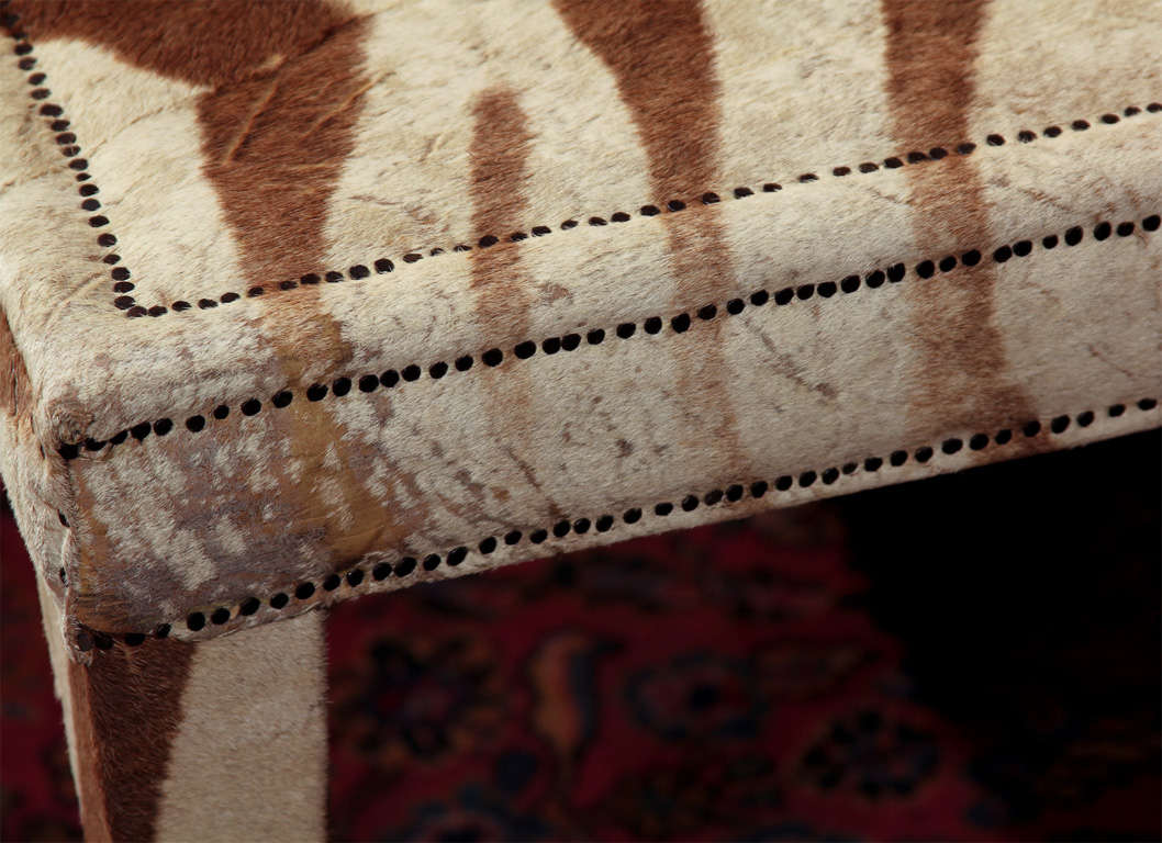 custom coffee/cocktail table upholstered in vintage zebra hide 5