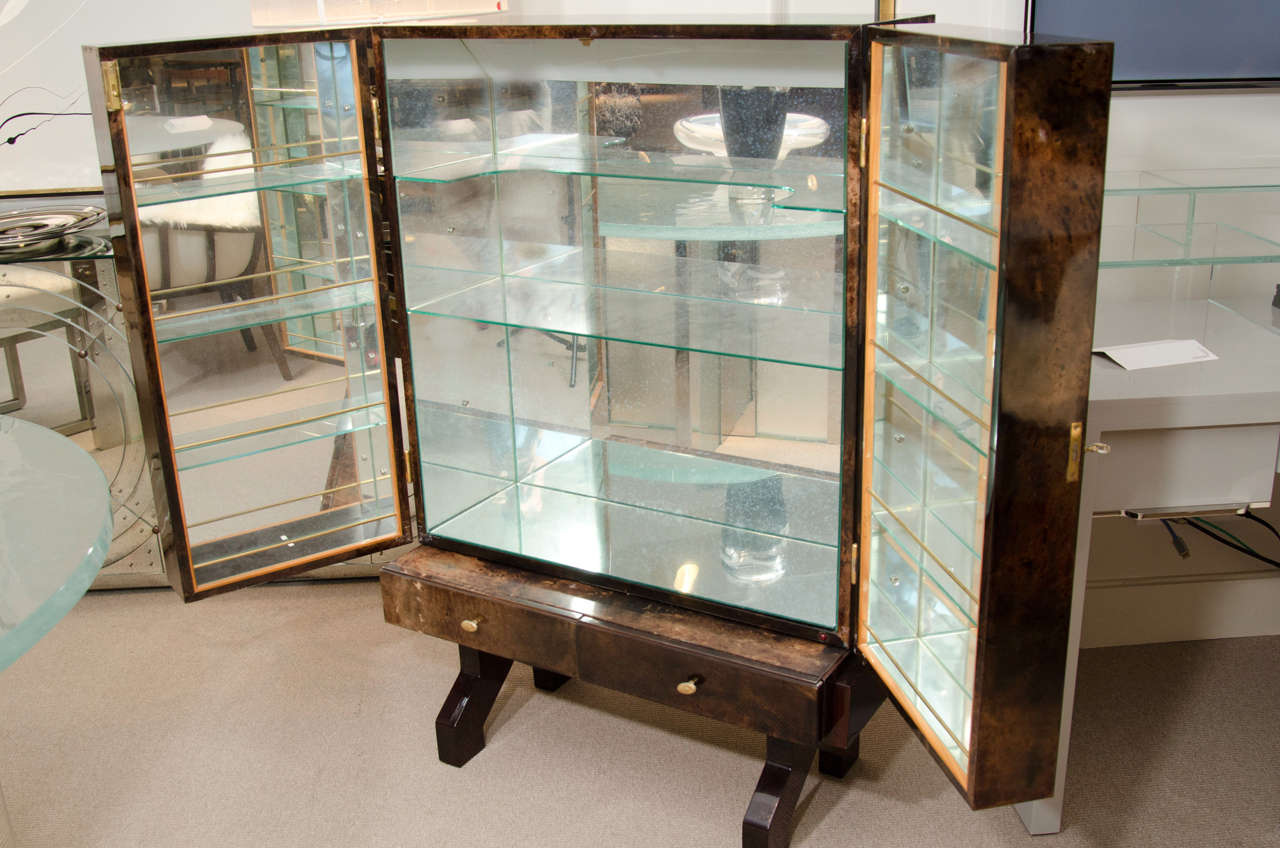 Tortoise Goatskin Bar Cabinet In Excellent Condition For Sale In New York, NY