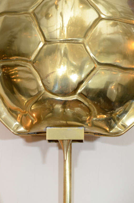 Pair of brass tortoise shell form sconces by Chapman at ...