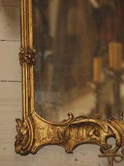 Giltwood mirror image 6