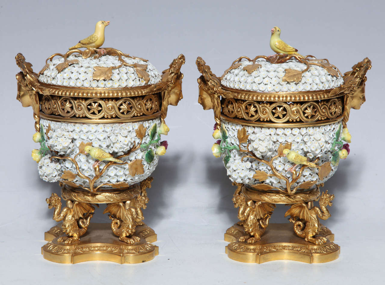 A very unusual and rare pair of Meissen Schneeballen and intricately ormolu mounted potpourri vases with covers. The vases are supported by finely detailed dragons with accompanying face mask handles. There are porcelain birds decorating the vase