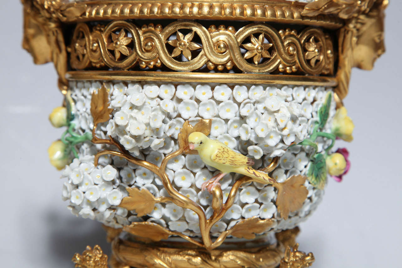 Rococo Pair of Meissen Schneeballen and Intricately Ormolu-Mounted Potpourri Vases For Sale