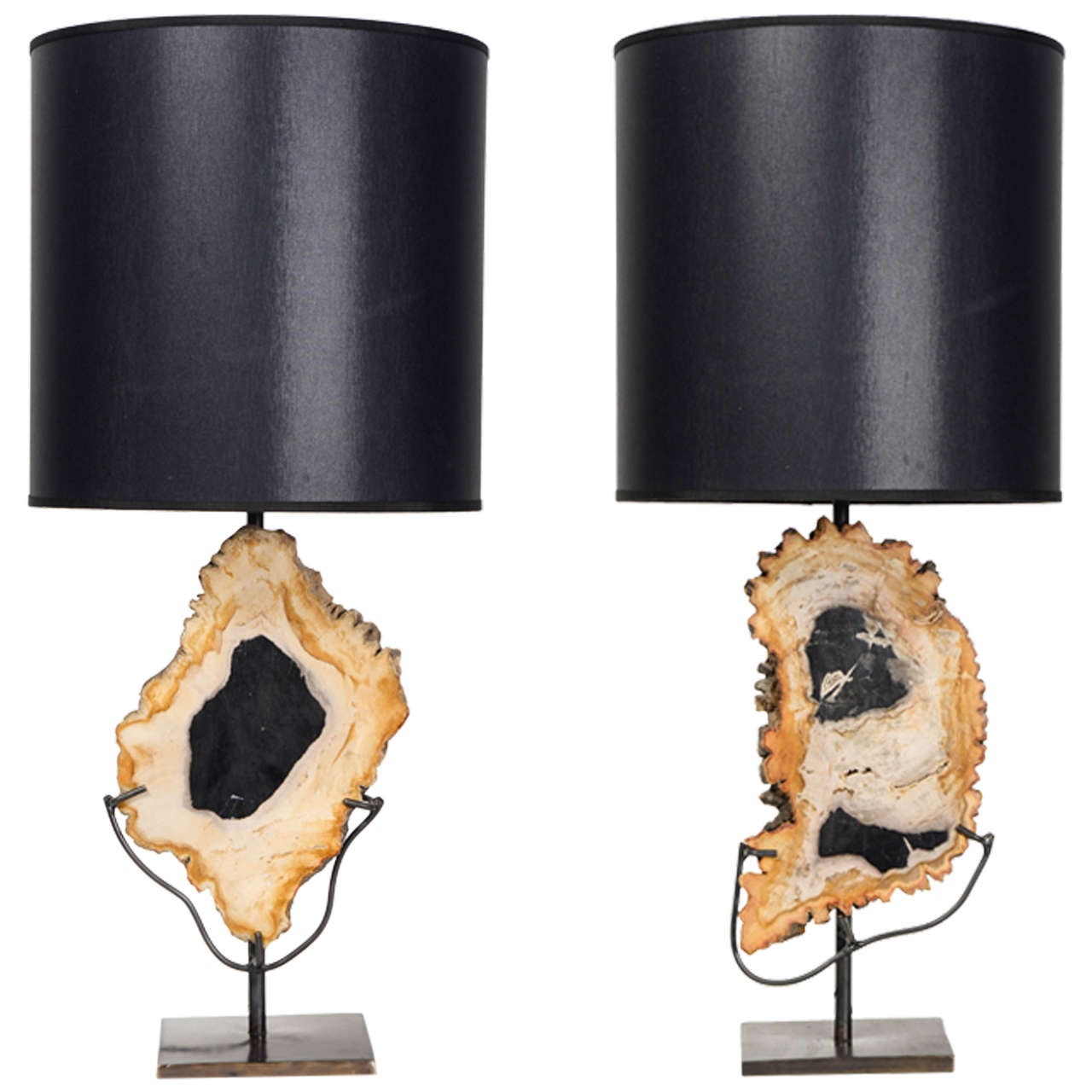 Nice Pair Of Asymmetrical Petrified Wood Table Lamps For Sale