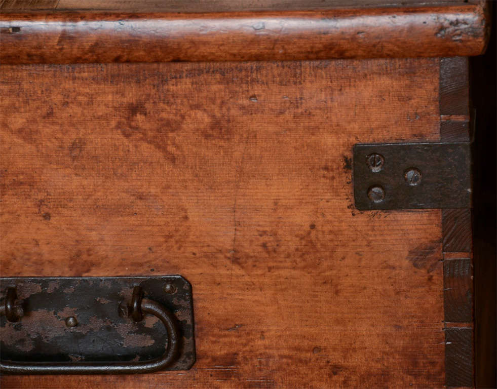19th Century English Faux Grained Painted Trunk image 5