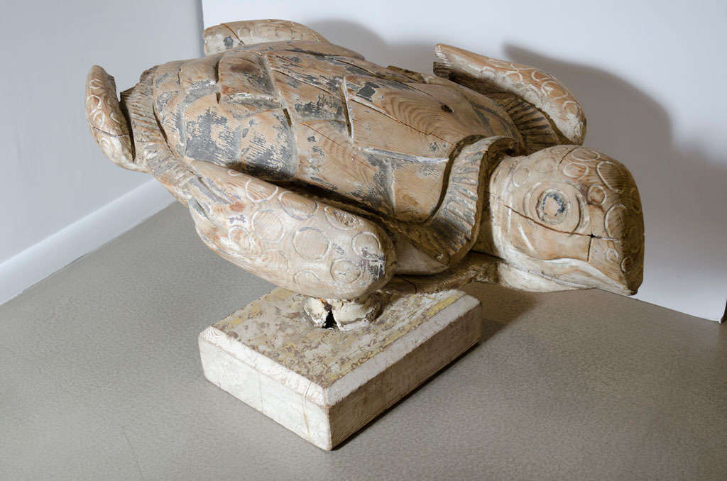 Life Sized Galapagos Carved Sea Turtle At 1stdibs