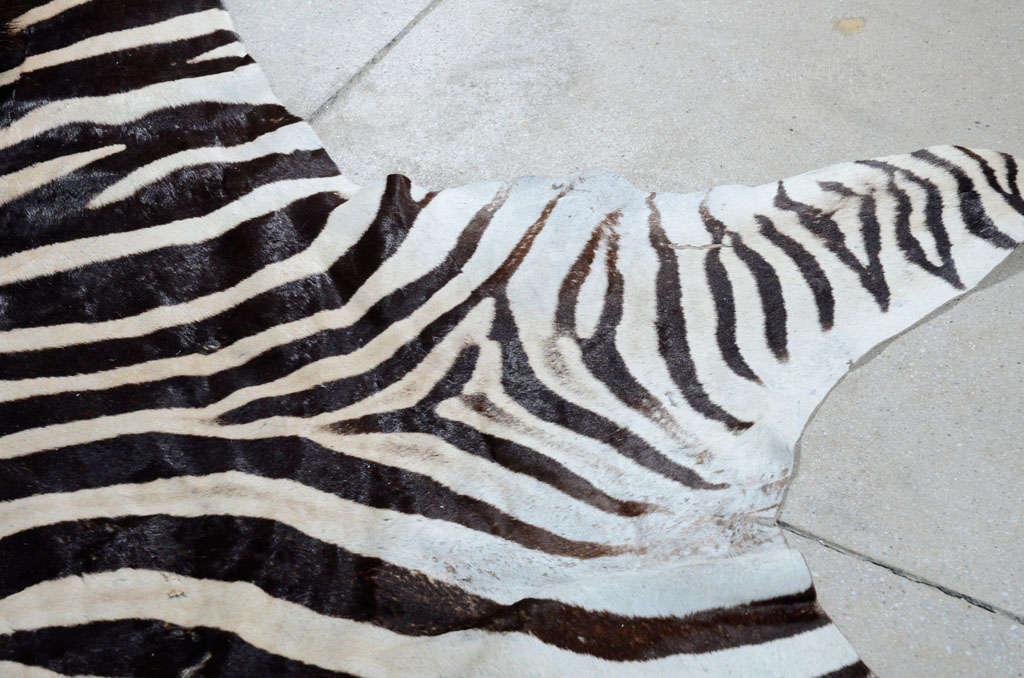 Zebra rug image 7