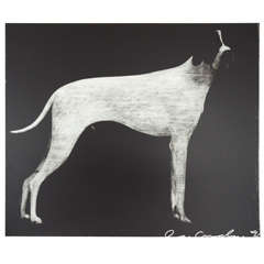 Usa Large Hound Prints