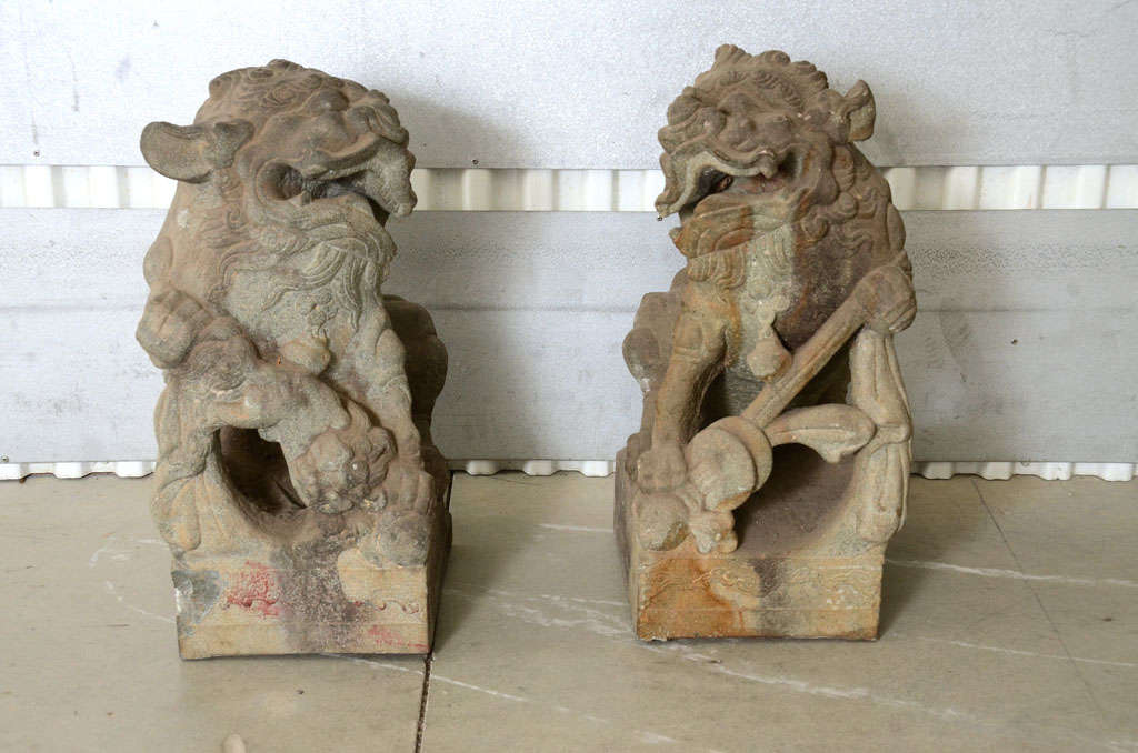 Pair of Late 18th Century Qing Dynasty Peking Carved Limestone Foo Dogs 2