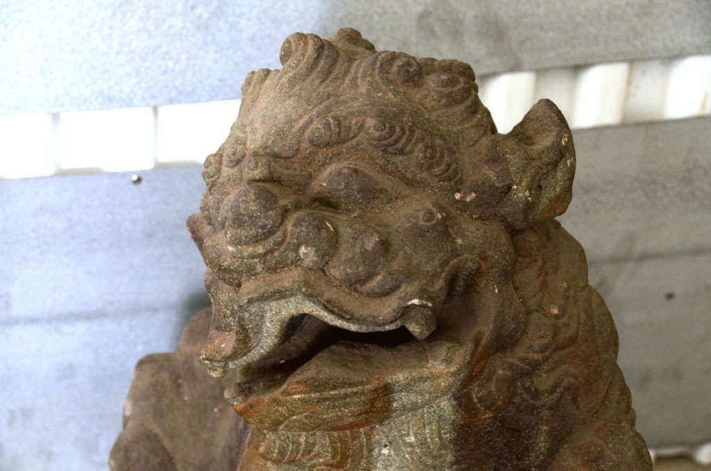 Pair of Late 18th Century Qing Dynasty Peking Carved Limestone Foo Dogs 6
