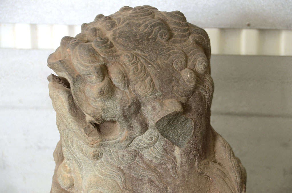 Pair of Late 18th Century Qing Dynasty Peking Carved Limestone Foo Dogs 10