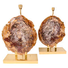 Amazing Pair of Petrified Wood and Metal lamps