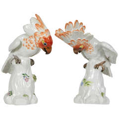 Pair of Meissen Porcelain Figures of Cockatoos or Birds