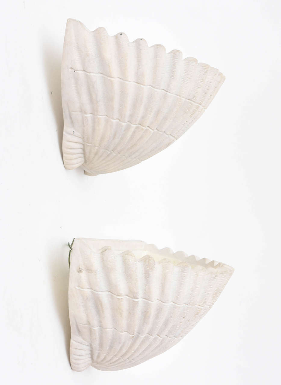 Plaster Sirmos Shell Form Sconces For Sale