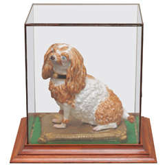 Meissen Porcelain, Cavalier King Charles Spaniel on Gilt Pillow in Glass Box