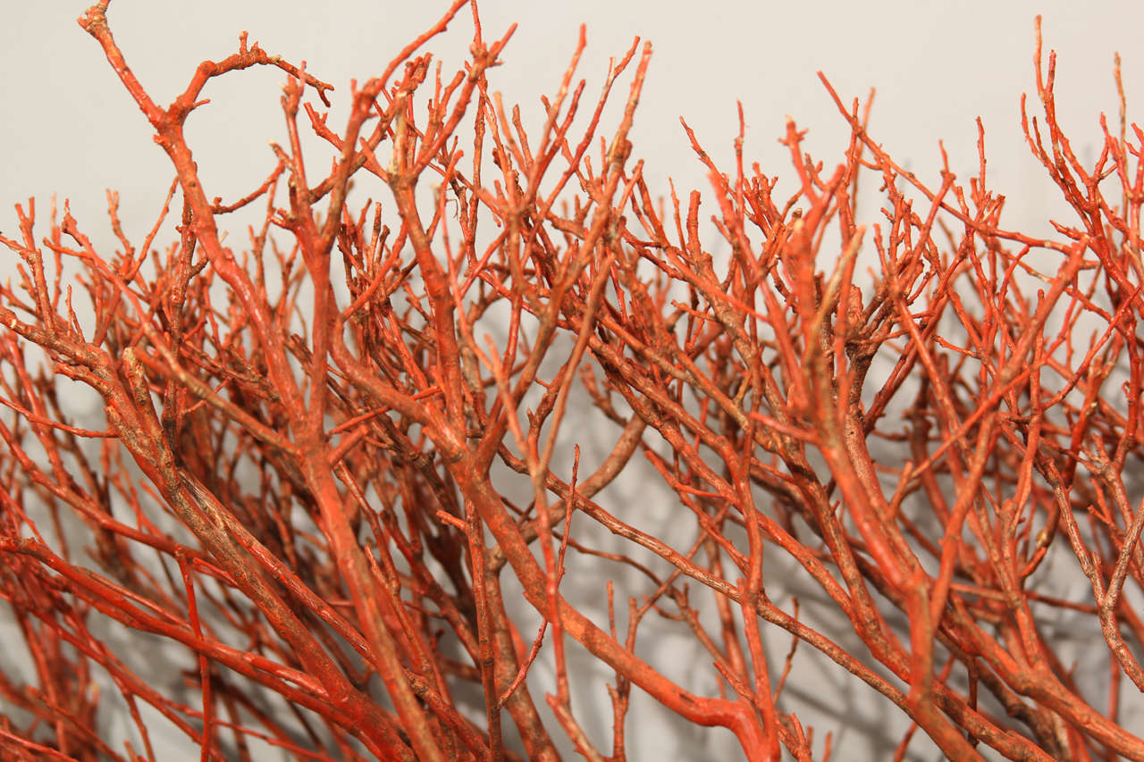 """Wood """"coral"""" Wall Sculpture 4"""